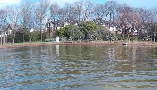 Roker Park Lake - recreational pond - boating and fishing
