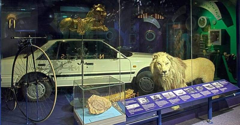 Sunderland Museum and Winter Gardens - Wallace Lion - First Nissan Bluebird Car