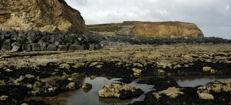 Unknown But Guilty - Featherbed Rocks Seaham